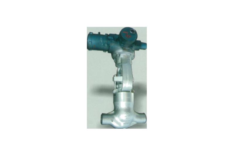 Straight Pattern Globe valve